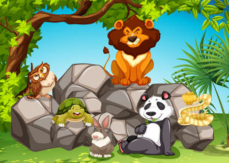 Mix animals sitting at the rocks Vector