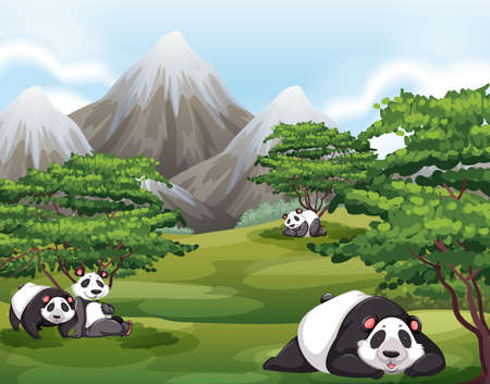 Four panda relaxing in a forest Vectores