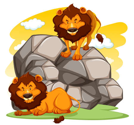 lions rock: A lion standing on rocks another lying down