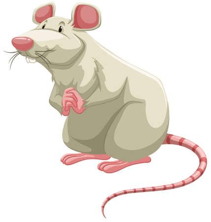 rata caricatura: De pie rata blanca con hebilla manos