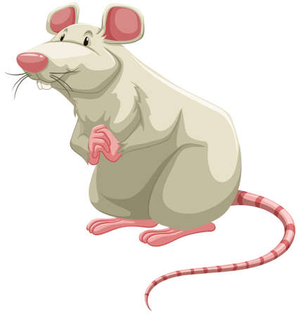 Standing white rat with folding hands