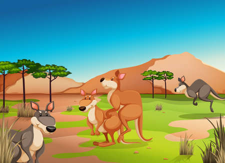 jungle jumping: Poster of kangaroos in a jungle