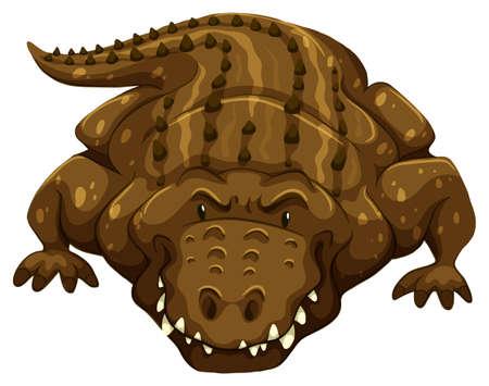 crawling creature: Big crocodile on a white background