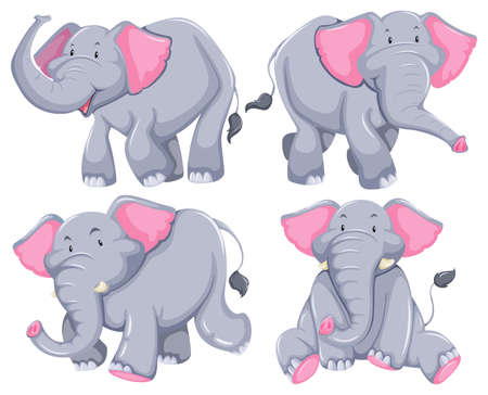 Four elephants in diferent poses Vector