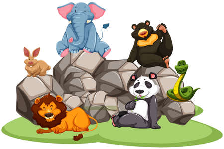 zoo cartoon: Animals in the zoo sitting on rocks and grass
