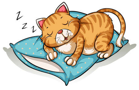 Cat taking a nap on a pillow Vector