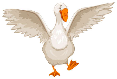 goose: White goose with open wings Illustration