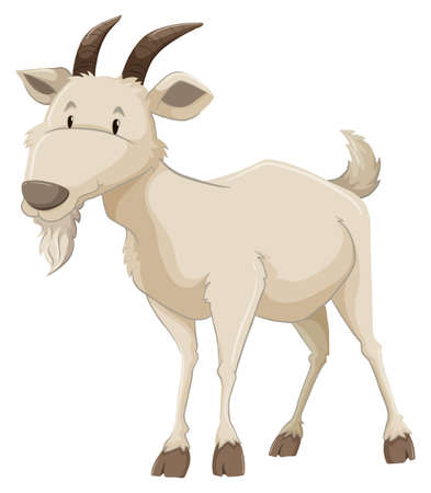goat: White goat on a white background Illustration