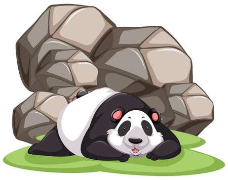 lying in: Panda lying in front of huge rocks