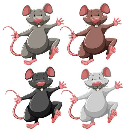 mouse animal: Four mice of different colors Illustration