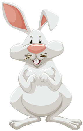 white rabbit: White rabbit with pink ears standing