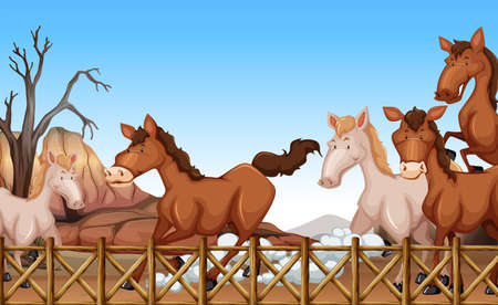 horse stable: Horses running in a stable