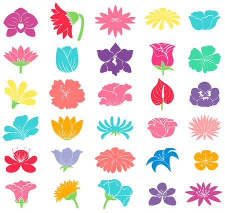 Sample of different species of flowers Vector