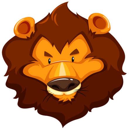 wild living: Big lion head on white background