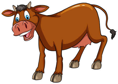 smile close up: Brown cow standing with white background