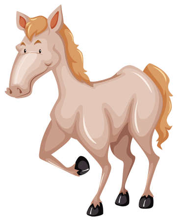 brown horse: Standing brown horse on white background Illustration