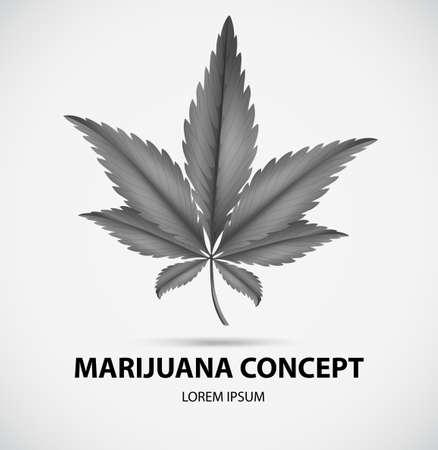 grayscale: Grayscale marijuana leaves on white background