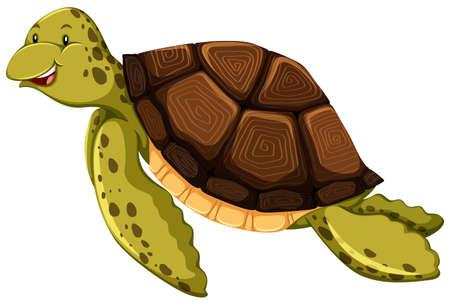 흰색 배경에 귀여운 거북이 일러스트