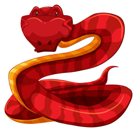 Red snake on white background
