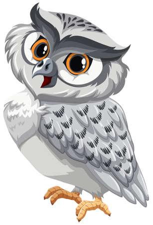 White owl on a white background