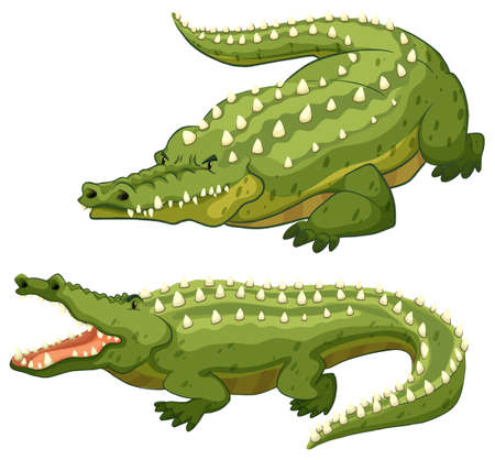 1,388 Crocodile Clipart Stock Illustrations, Cliparts And Royalty ...