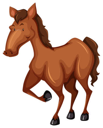 brown horse: Brown horse with one leg up on white background