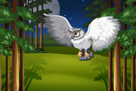 Poster of a white owl flying under full moon and stars Vector