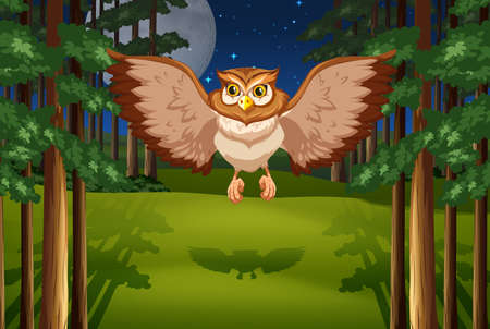 Poster of an owl flying in the jungle under full moon and stars Vector