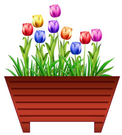 カラフルなチューリップの花のポット  イラスト・ベクター素材