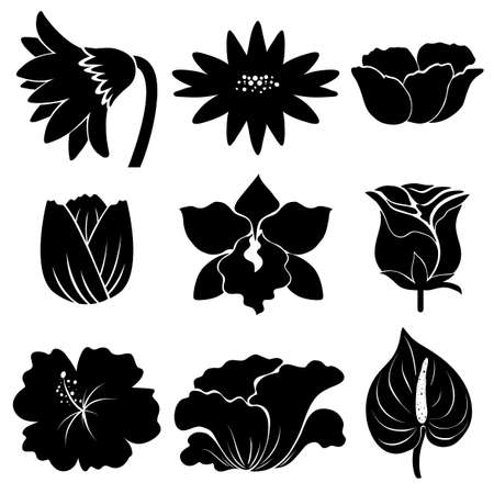 simple flower: Sample of different types of flowers in black color
