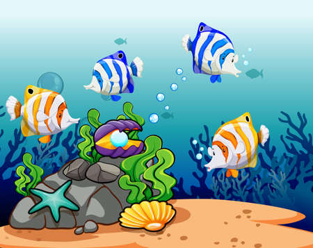 sea shells: Colorful fish with reefs under the water