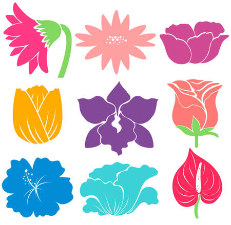 Sample of different kinds of flowers Vector