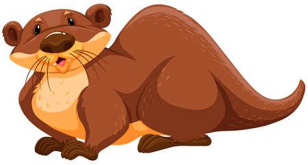 otter: Brown otter sitting pose on white background