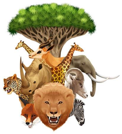 wild living: Wild animals under a tree on white background