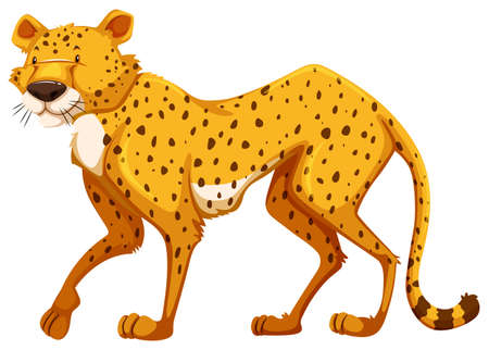 animals clipart: Standing cheetah on a white background