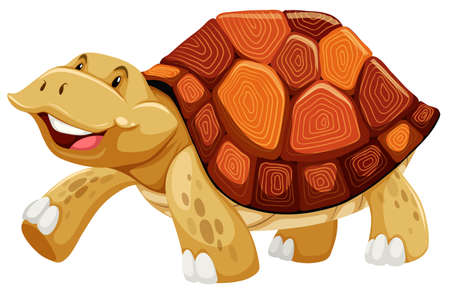 smile close up: Brown turtle walking on whitebackground Illustration