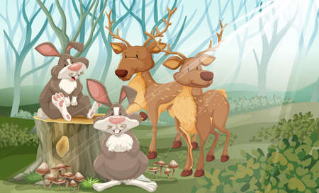wild living: Rabbits and deer in a forest