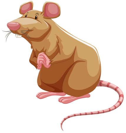 rata caricatura: Brown que se coloca rata con las manos juntas Vectores