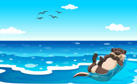 sea otter: Sea otter lying on his back in water Illustration