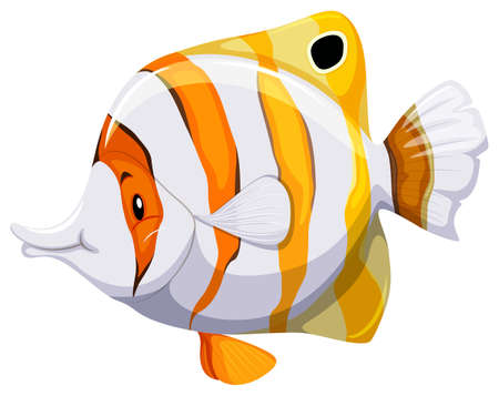 fishtank: Side view of a fish on white background