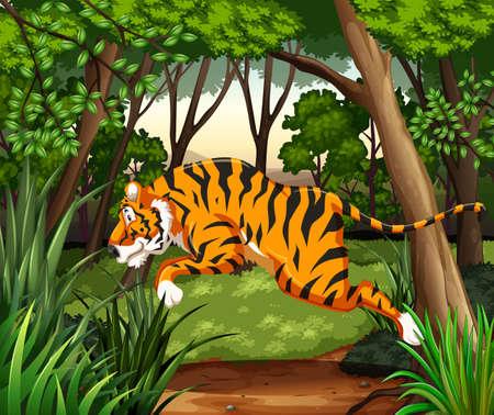 jungle jumping: Huge tiger jumping in a jungle Illustration