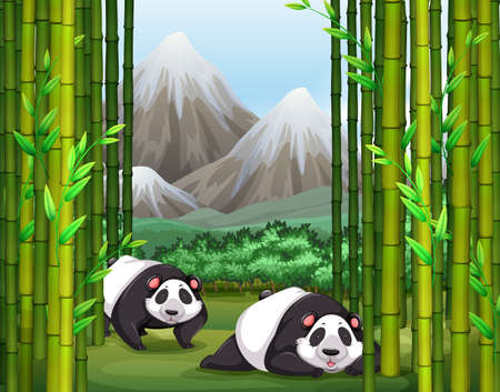forest clipart: Panda sitting near the bamboo trees Illustration