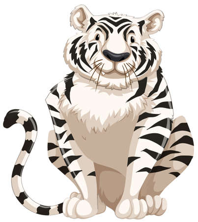 wild living: Black and white tiger on white background