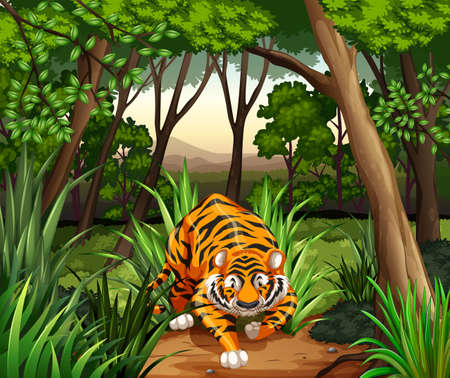 jungle cartoon: Tiger caminando en una selva Vectores