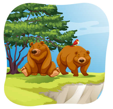 enormous: Two brown bears sitting on a cliff near a tree Illustration