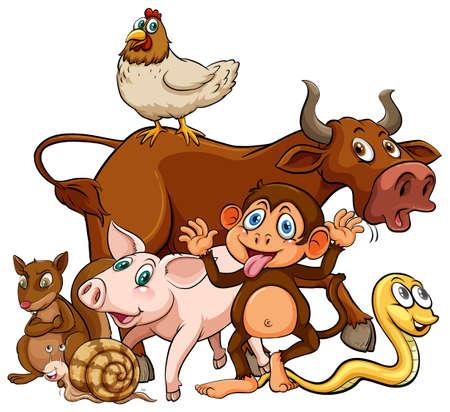 wild living: Many farm animals living together