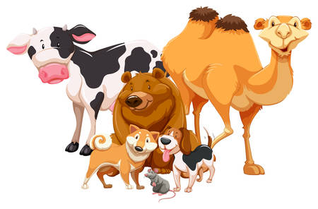 cartoon camel: Group of animals standing together on white background Illustration