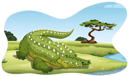 river bank: Cruel crocodile relaxing by the river bank Illustration