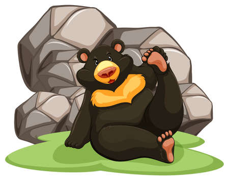black and white background: Black bear sitting against big rocks on white background