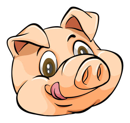 Smiling face of a pig on white background